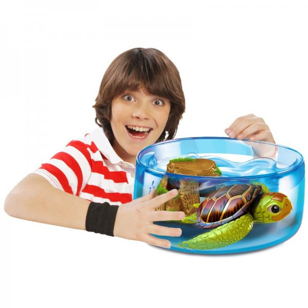 Robo turtle play set inc 1 turtle bowl rock formation for Robo fish toy