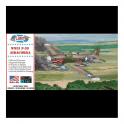 Atlantis Models 1:46 P-39 Bell Airacobra Aircraft Model Kit